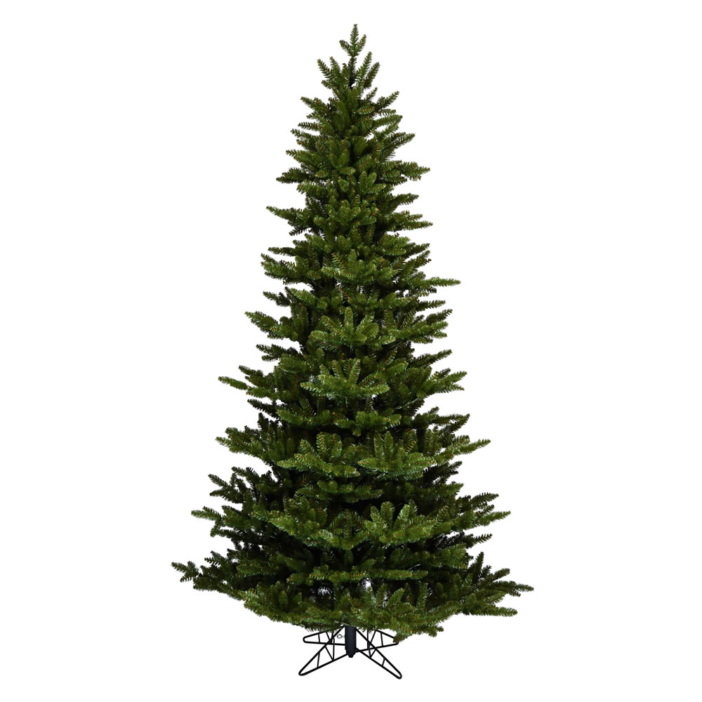 12 Foot Natural Fraser Artificial Christmas Tree Unlit