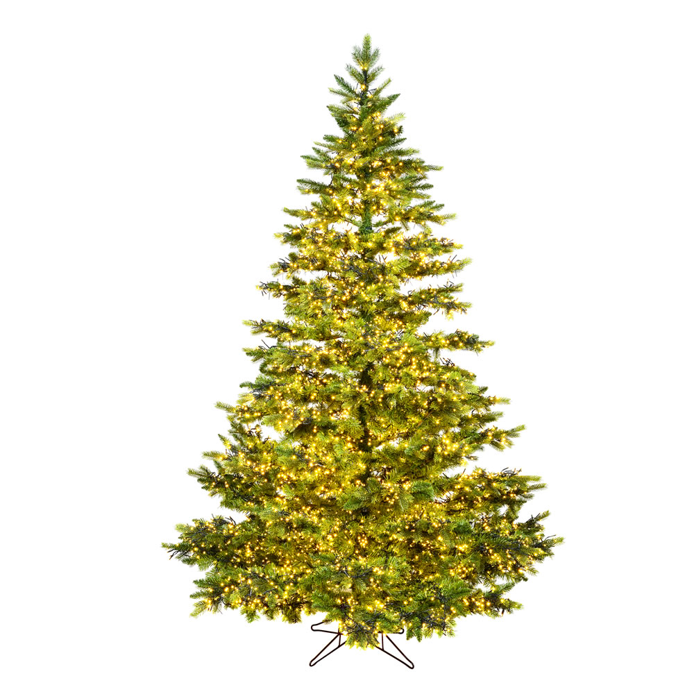 9 Foot Takoma Frasier Artificial Christmas Tree 1300 Dura-Lit LED Warm White Multi-Colored 8 Function Changing Mini Lights