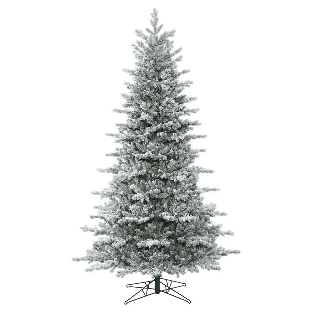 12 Foot Frosted Eastern Frasier Fir Artificial Christmas Tree Unlit