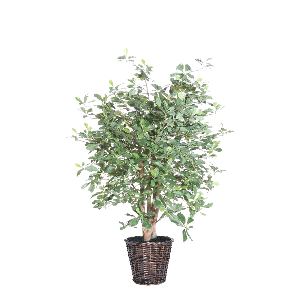 4 Foot Black Olive Potted Artificial Plant