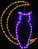 Owl In Moon LED Lighted Lawn Decoration